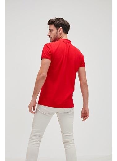 Bad Bear Erkek Polo Tişört 18.01.07.002 Kırmızı
